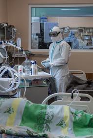 Оглашена дата поступления в больницы первого российского лекарства от COVID-19
