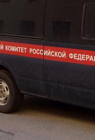 СК направил криминалистов в Крым для поиска пропавшей шестилетней девочки