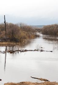 В Нахабино жители покинули дома из-за потопа
