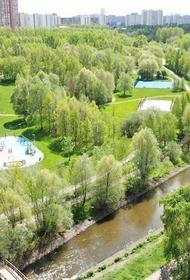 Депутат Мосгордумы: Озеленение городских территорий является одним из важнейших акцентов благоустройства