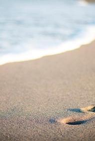 Ростуризм сообщил, когда Краснодарский край и Крым откроют пляжи