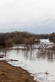 Жители Шацкого района Рязанской области жалуются, что находятся в заточении и не могут покинуть затопленное село