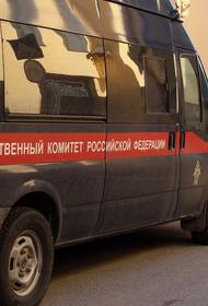В Калининграде завели уголовное дело после падения женщины с ребенком на руках в люк