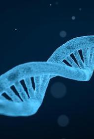Кому поручено заняться созданием национальной базы генетических данных