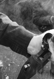 Специалист по огнестрельному оружию оценил винтовку, способную стрелять на семь километров