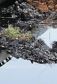 Разлив десятка тонн нефти произошел в Заполярье