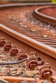 В Приморье женщину и ребенка насмерть сбил грузовой поезд