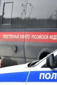 В Пермском крае обнаружили пропавшую двухлетнюю девочку