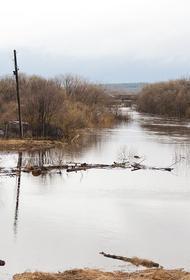 На этой неделе дожди могут вызвать потопы в шести регионах России
