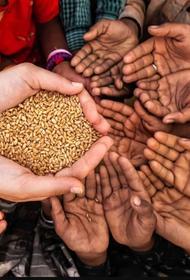 Мир может столкнуться с глобальной нехваткой продуктов и голодом из-за пандемии коронавируса, сообщил генсекретарь ООН