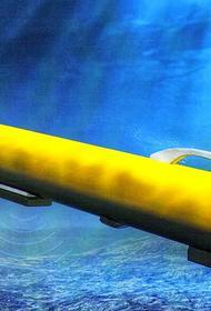 В России ведутся работы над созданием глубоководных беспилотников