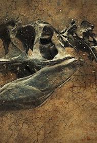 Аргентинские палеонтологи открыли новый вид динозавра с лапами, напоминающими крылья
