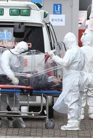 Британские ученые заявили, что пандемия COVID-19 только началась