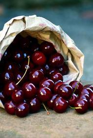 Биолог предупредила, что угощать детей ягодами нужно с осторожностью