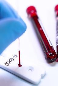 В Пекине сообщили об очень высоком риске распространения COVID-19 из-за вспышки болезни на рынке