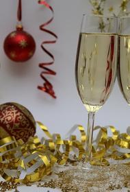Парламентарий прокомментировал идею сократить новогодние каникулы до трёх дней