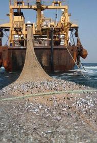 Англичане хотят начать с Россией «рыбную войну»