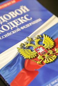 В профильный комитет Госдумы направили поправки в Трудовой кодекс о дистанционной работе