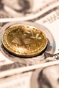 В Минюсте раскритиковали законопроект о запрете криптовалюты