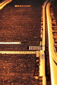 В Подмосковье поезд сбил заслуженную артистку РФ Галину Дашевскую, от полученных травм женщина скончалась