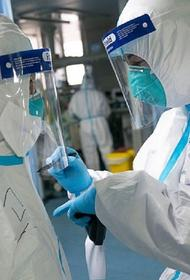 В Новосибирске около 80 сотрудников инфекционных госпиталей заразились коронавирусом