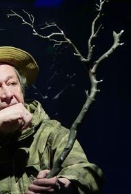 Правозащитник объяснил, какие условия ждут Ефремова в разных видах колонии