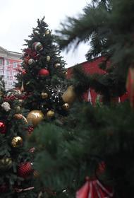 В Совфеде  против сокращения новогодних праздников в 2021 году