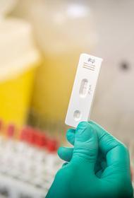 Гендиректор ВОЗ: мир вступил в новую опасную фазу пандемии COVID-19