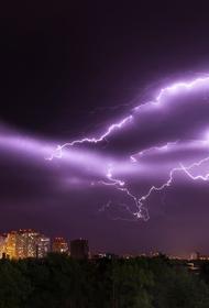 Молния ударила в посетителей Коломенского парка.  Госпитализированы 44-летняя женщина и 45-летний мужчина