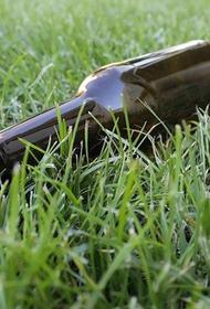 В РФ предлагается создать вытрезвители для пьяных правонарушителей
