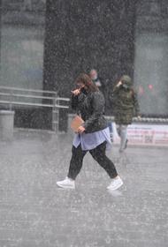 Экстренное предупреждение: гроза, дождь и град в Москве продолжатся до полудня воскресенья