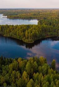 СПЧ выступил против законопроекта об изъятии земель национальных парков