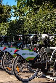 Депутат Мосгордумы Киселева: Около 67 тыс поездок за день совершается на прокатных велосипедах в Москве