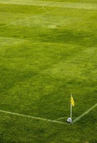 Во втором дивизионе чемпионата Англии выявили три новых случая инфицирования COVID-19