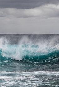 Чемпионка мира по паралимпийской гребле погибла при попытке пересечь на лодке Тихий океан