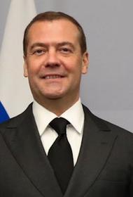 Дмитрий Медведев проголосовал по поправкам в Конституцию РФ