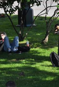 В выходные москвичей ожидает жара больше 30 градусов