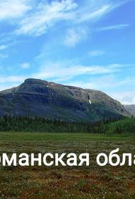 Население Мурманской области: численность, гендерная и возрастная структура, прогноз до 2024 года