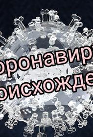 Возможные создатели коронавируса так до сих пор и не пойманы