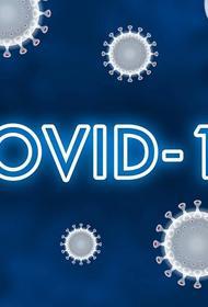 Число зараженных коронавирусной инфекцией в Иране превысило 220 тысяч человек