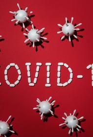 Ученые обнаружили новую способность коронавируса размножаться в организме человека