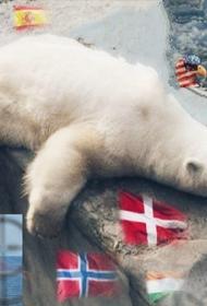 Арктика под прицелом: международная обстановка накаляется