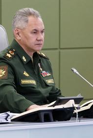 Шойгу доложил Путину о работе над вакциной от коронавируса