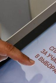 Явка на онлайн-голосовании по поправкам к Конституции превысила 90%