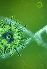 В Молдавии число случаев заражения коронавирусом достигло 16 898
