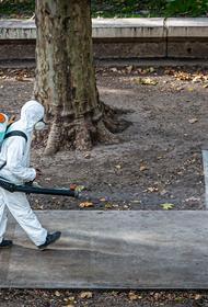 Собянин: «Сомневаюсь, что будет вторая волна коронавируса»