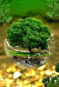 Экология и экономия: Kusto Group  строит инновационный завод по переработке микросферы