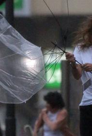 Не менее 15 человек погибли в Японии из-за ливневых дождей