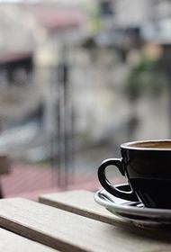Летние кафе открываются в Новосибирской области