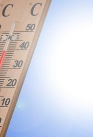 Синоптик рассказал о погоде в Москве в понедельник